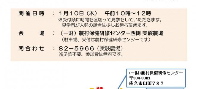 見学会広報-2